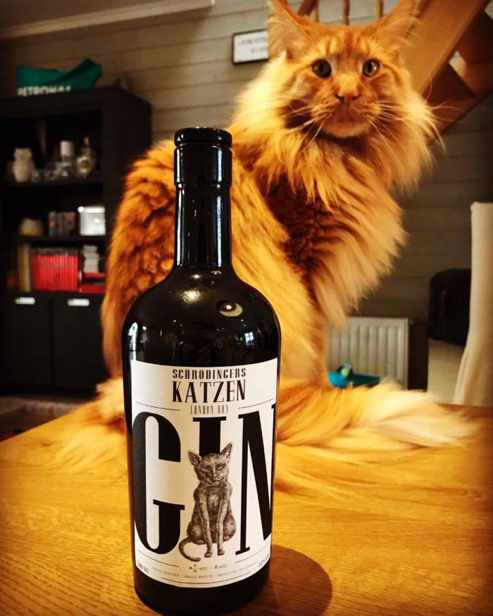 Schrodingers Katzen Gin