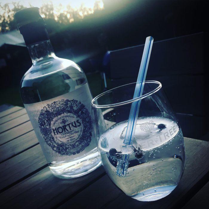 Hortus Gin - Lidl Gin